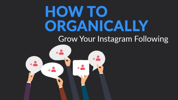 How To Organically Grow Your Instagram